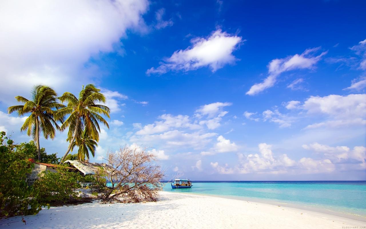 beach_side-1280×800